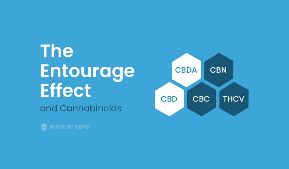 Entourage Effect: The Power Behind the Benefits of CBD Products