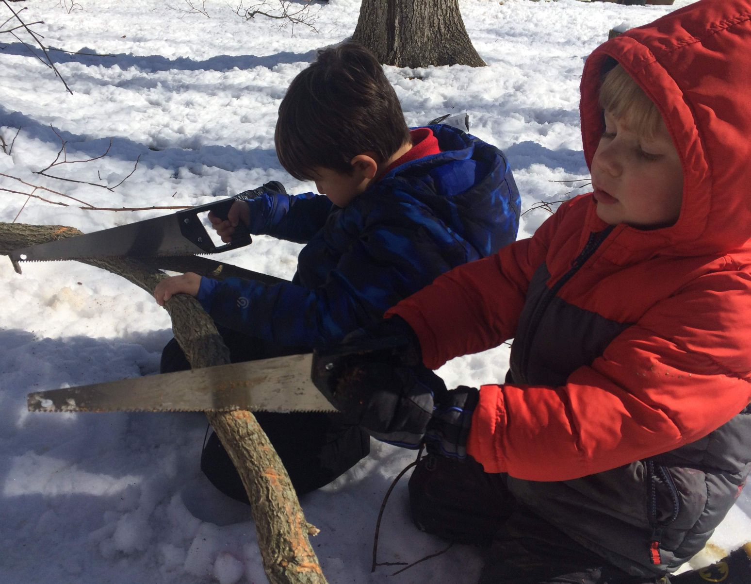 sawing snow branch
