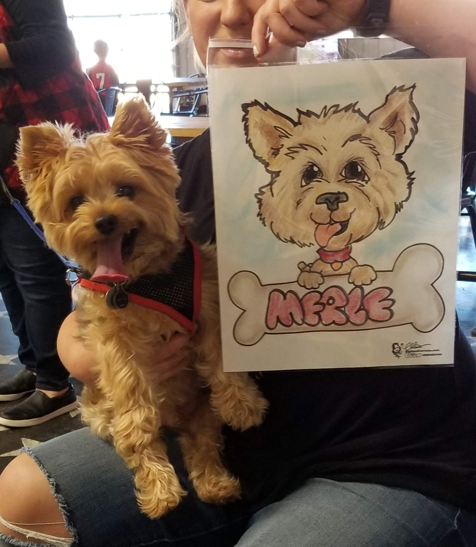 Nashville Caricature Artist Pet Caricatures Big Head Cartoon