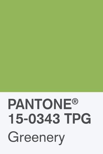 pantonechip_1jpg