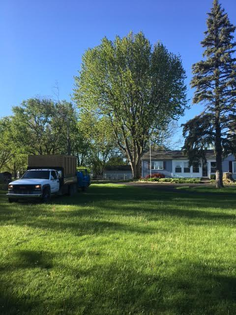 Arrow Tree Service returns a yard to pristine condition after tree cutting in Adrian, Michigan.