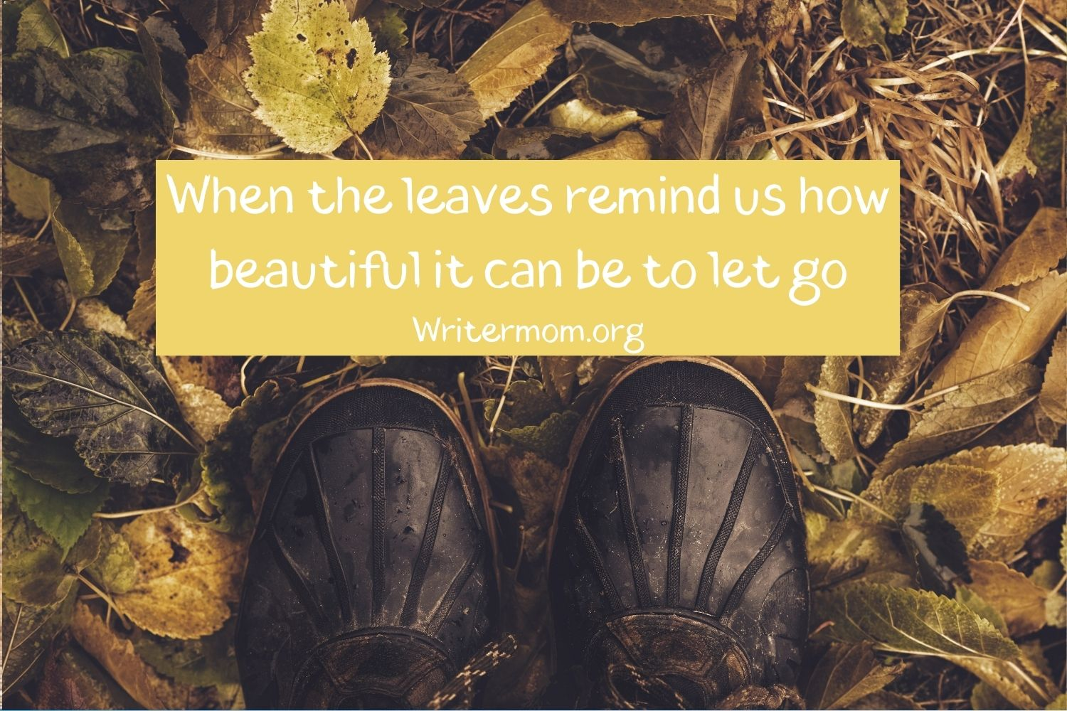 When the leaves remind us how beautiful it can be to let go