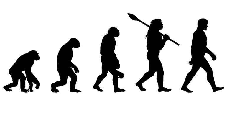 Evolution is Your Friend