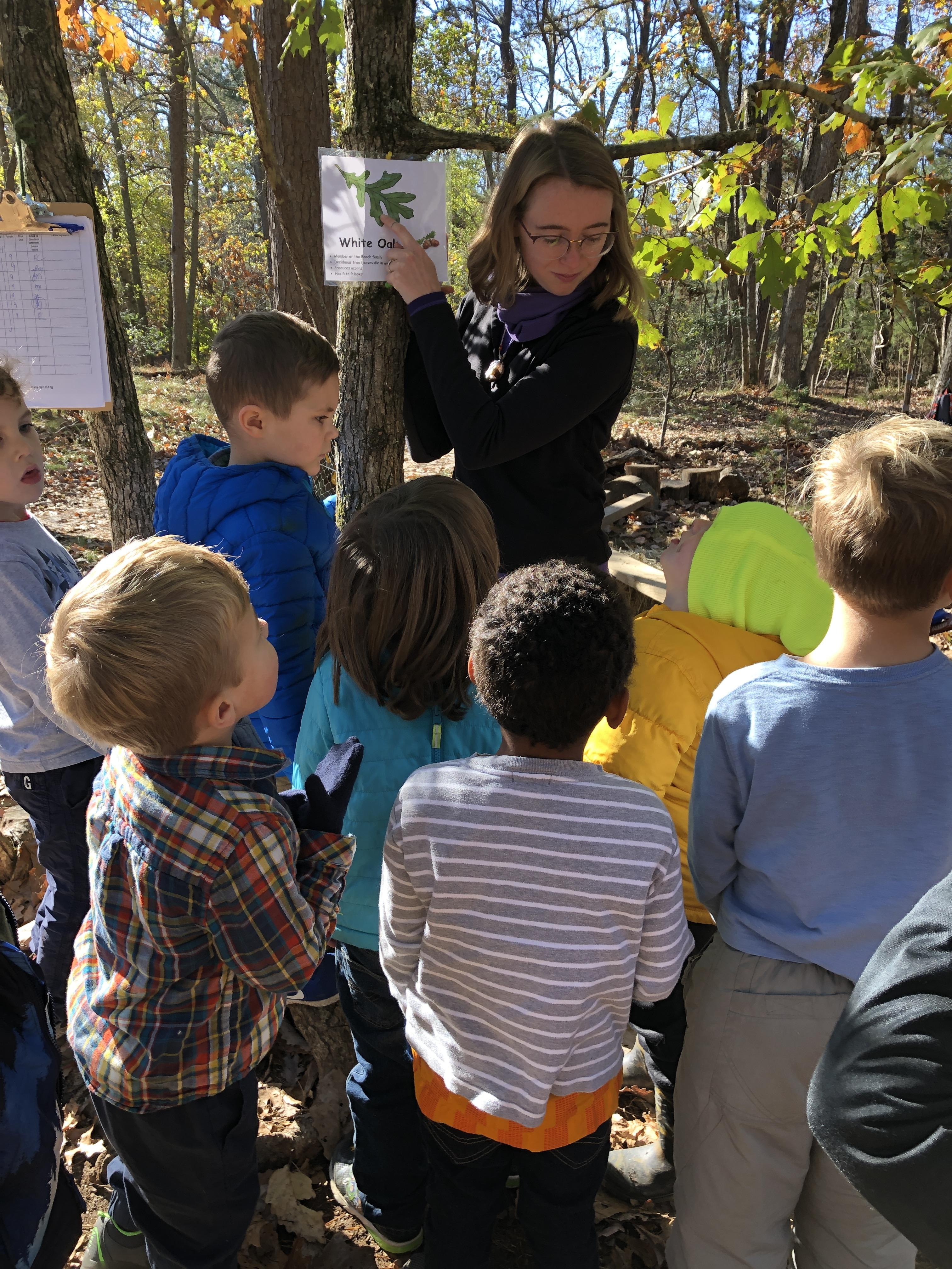 environmental education nature school