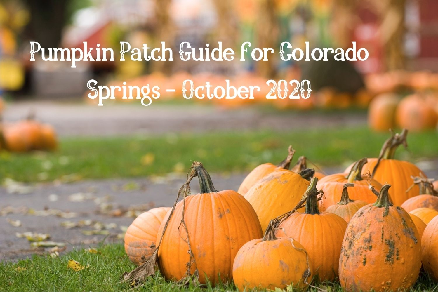 Pumpkin Path Guide for Colorado Springs– October 2020
