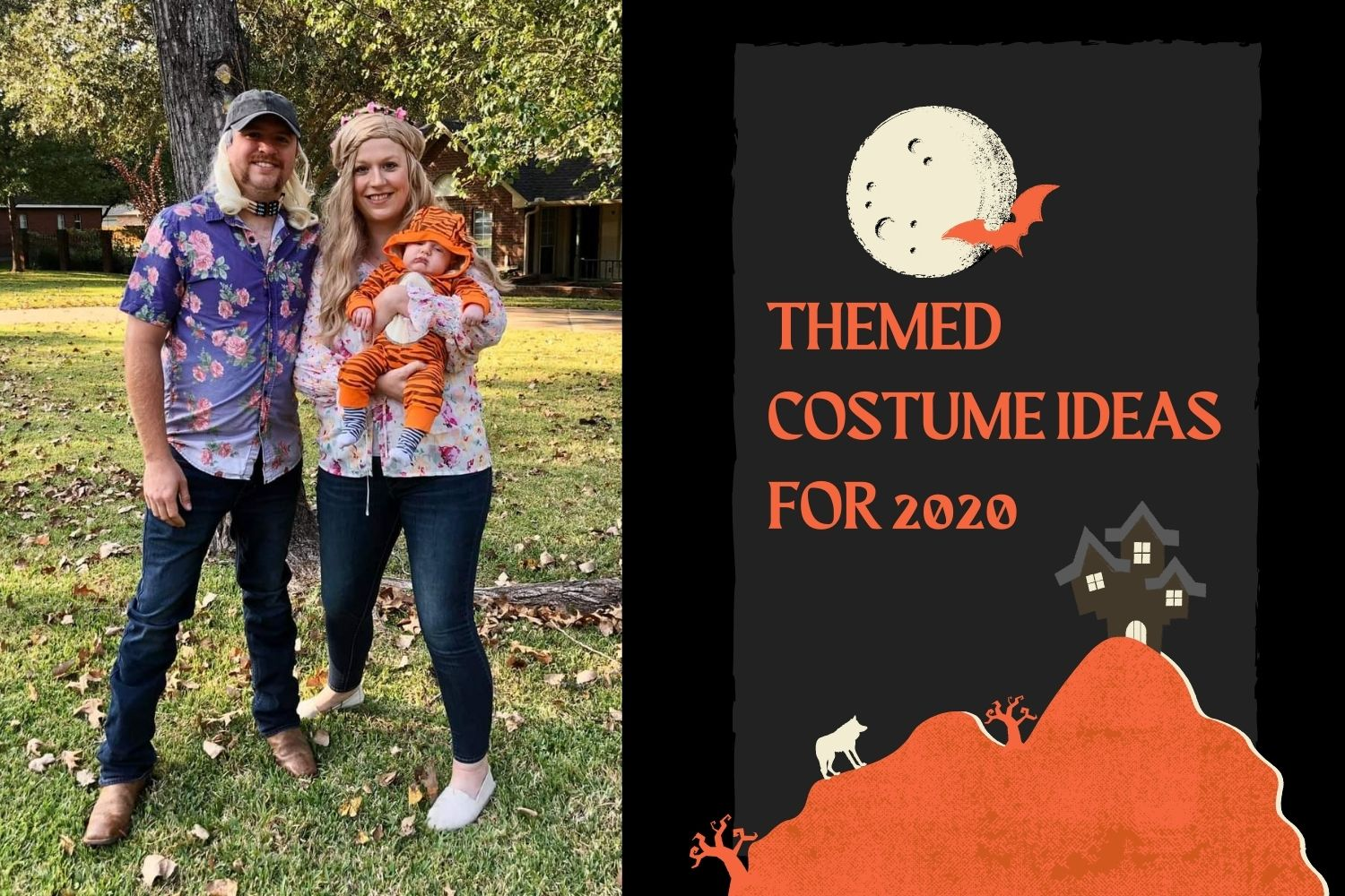 Themed Costumes Ideas for Halloween 2020
