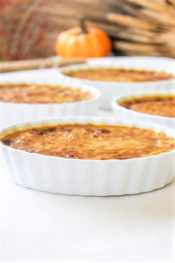 cream brulee sugar freejpg