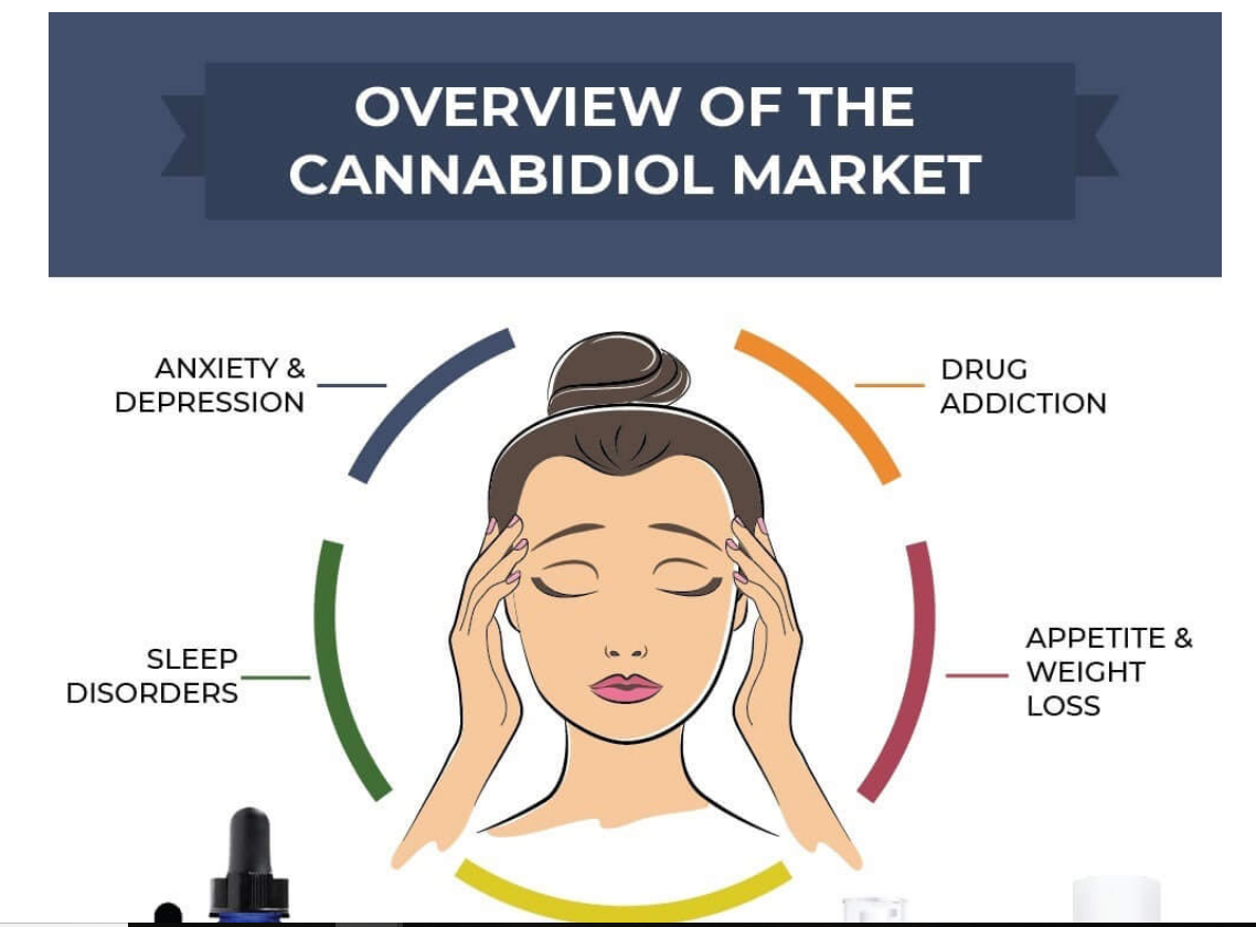 Infographic: Overview of the Cannabidiol Market from TerraVida