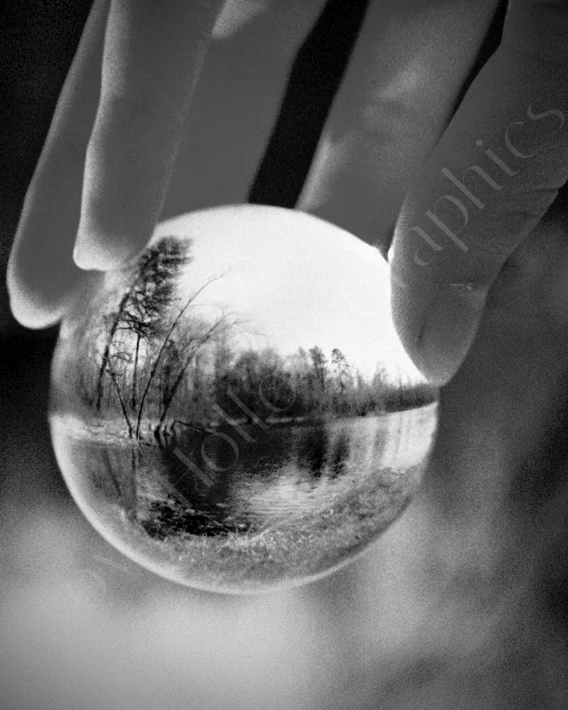 Whole World in My Hands