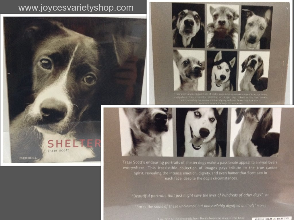 Shelter Dogs Book